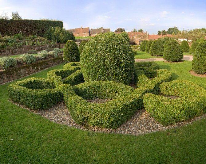 Gardening tips for a beautiful garden in camden - Tips for a lovely garden ...
