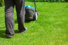 Is Grass Cutting The Most Important Part Of Garden Care In Twickenham?