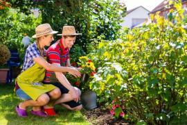 Healthy Gardening In Islington