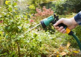Why Garden Care Services Are Important For Your Garden In Hackney