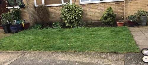 garden landscape design Crook Log