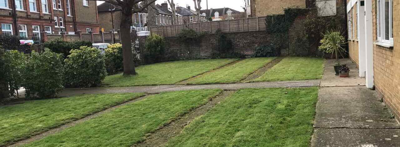 KT4 maintaining lawns Old Malden