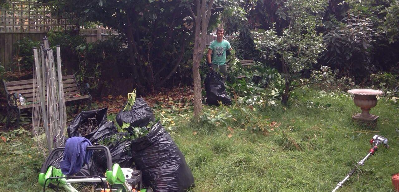 W12 maintaining lawns White City