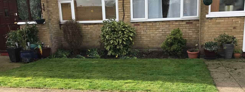 Brockley landscaping