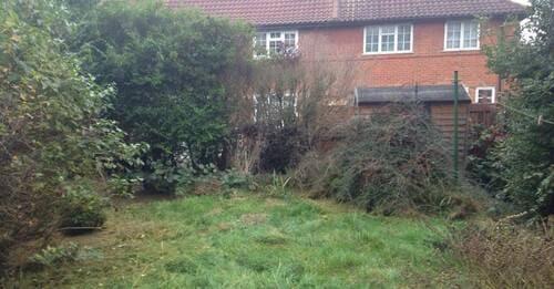 Chiswick garden cutting W4