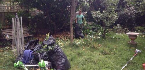 SG1 gardener service Hitchin