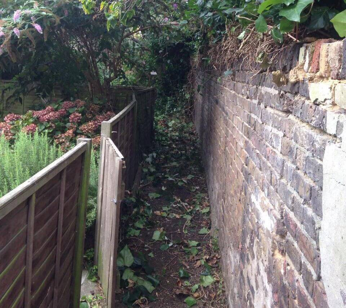 HA3 garden tidy ups