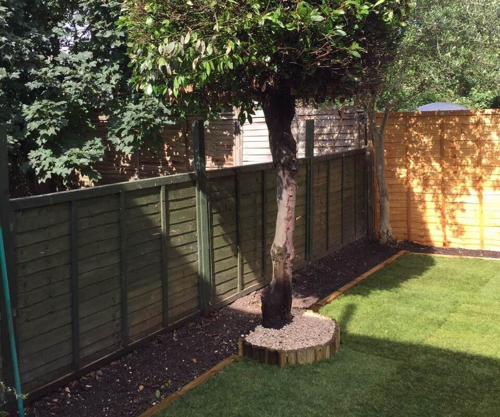 South Kensington garden cutting SW7