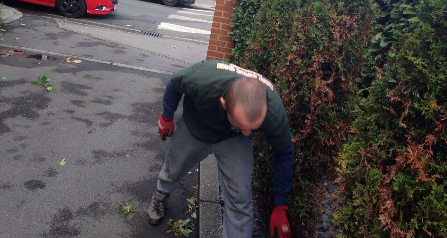 St Helier garden cutting SM4
