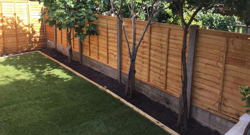 Tokyngton garden cutting HA9